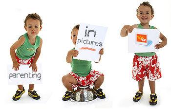 pip_main_image.jpg